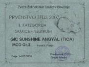Prvenstvo SFDS 2007